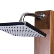 30NTEAGR-Showerhead